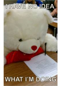 a-student-came-into-class-with-a-giant-valentines-bear-i-didnt-know-what-to-do-with-it-so-i-made-it-take-the-quiz-fixed_1338542678_epiclolcom